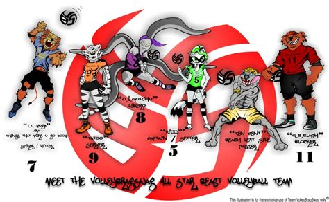 Volleyball T-Shirt Design By Volleybragswag Is Beast
